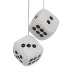 Carpoint Luchtverfrisser Lucky Dice Outdoor Fresh 10571