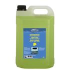 Protect Protect.Ruitenreiniger zomer 5L 50613